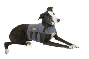 Hundeberuhigungsshirt - Petlife´s Karma Wrap, angezogen